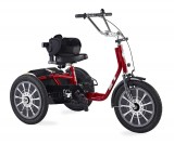 Colt tricycle